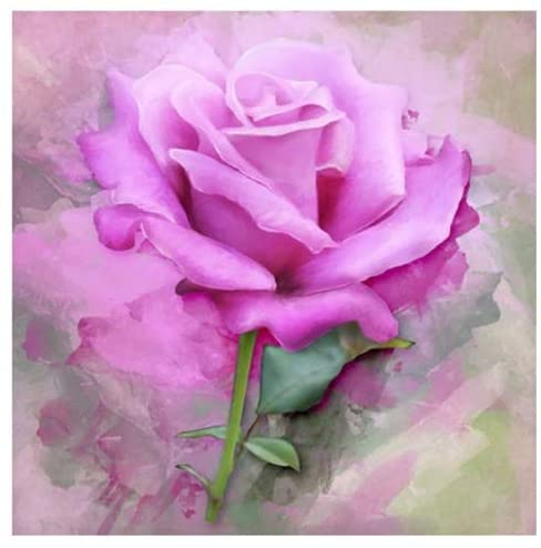 WNSS9 5D DIY Diamond Painting by Number Kits Fameless Rhinestone Full Square Drill Rose Flower Embroidery Cross Stitch Diamond Paintings Funny Handmade Diamond Painting Wall Decor Handcraft Mural